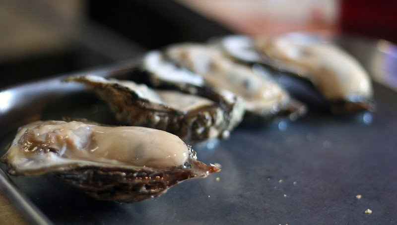 Gulf Coast Oysters at Wintzell's Oyster House | things to do in houston