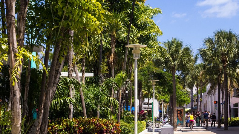 Lincoln Road - Lincoln Road Mall Miami | things to do in miami