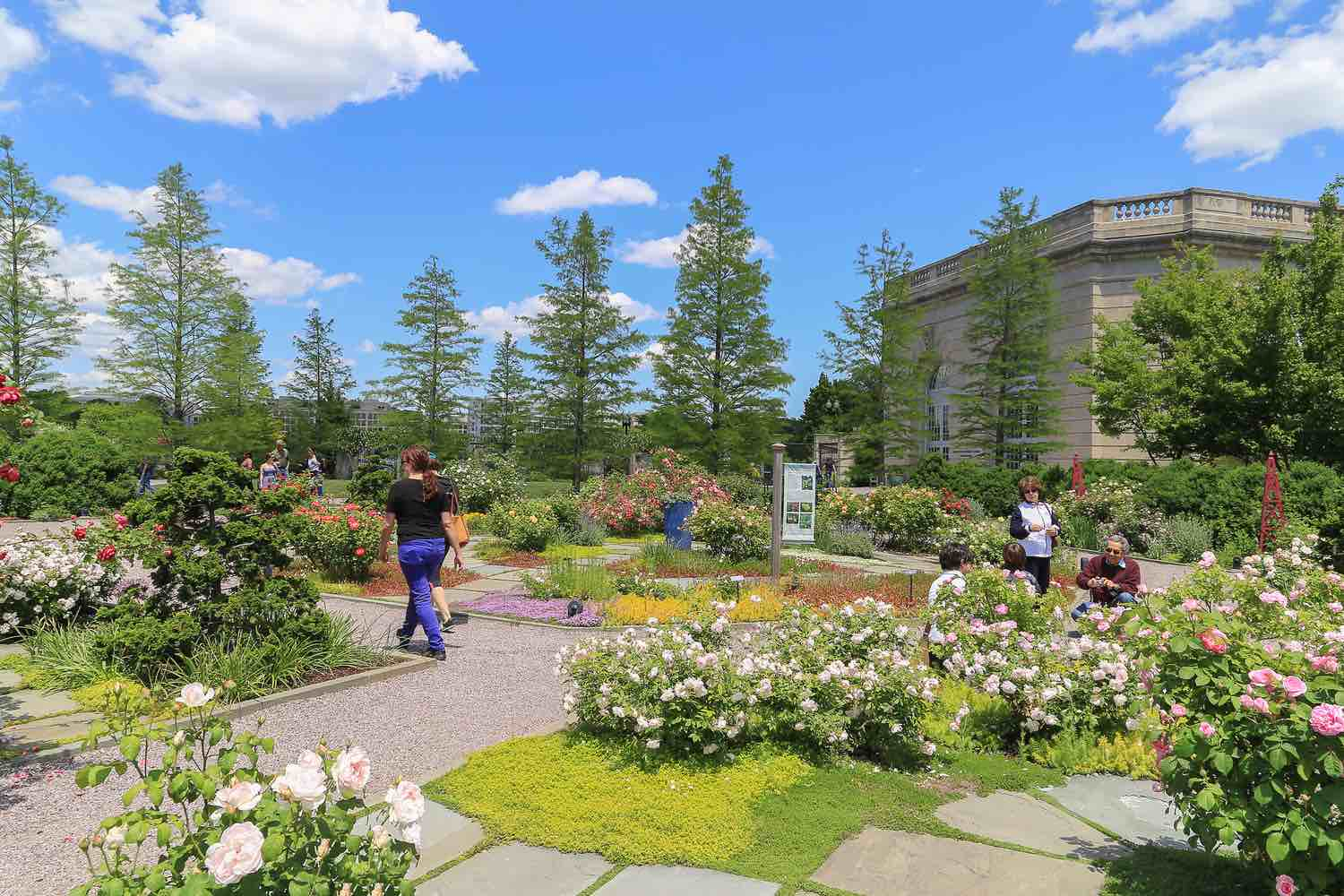 Outdoor of national garden in Botanic Garden with blue sky and cloud. People walking around to see the difference kinds of tree and flower