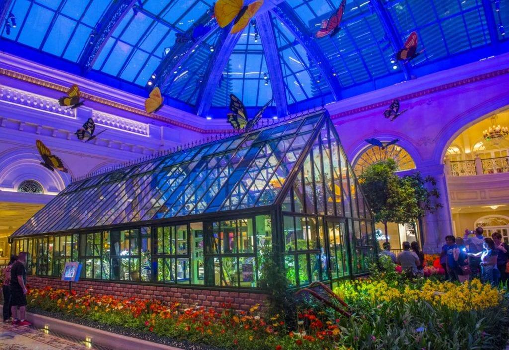 Spring season in Bellagio Hotel Conservatory & Botanical Gardens Best things to do in Las Vegas