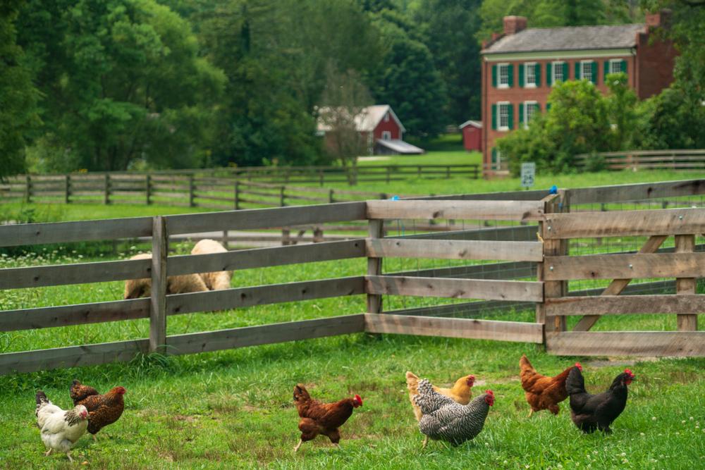 Hale Farm and Village Akron