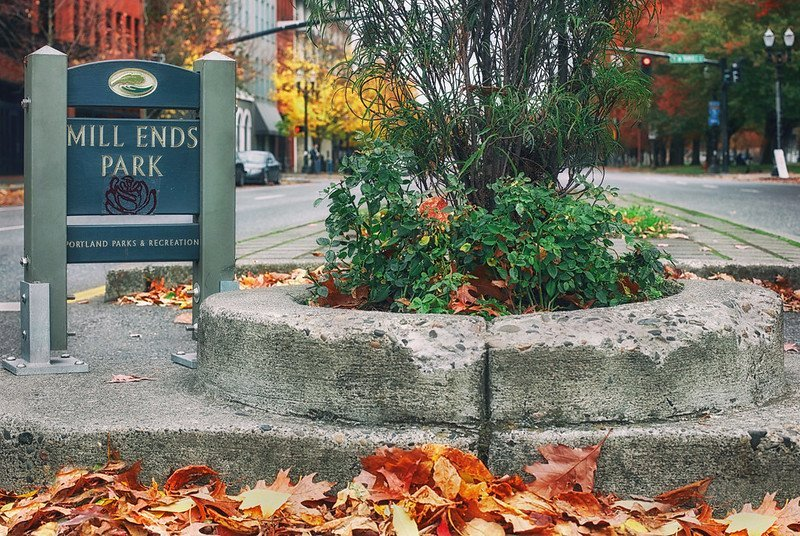 It's Autumn at Mill Ends Park | things to do in portland