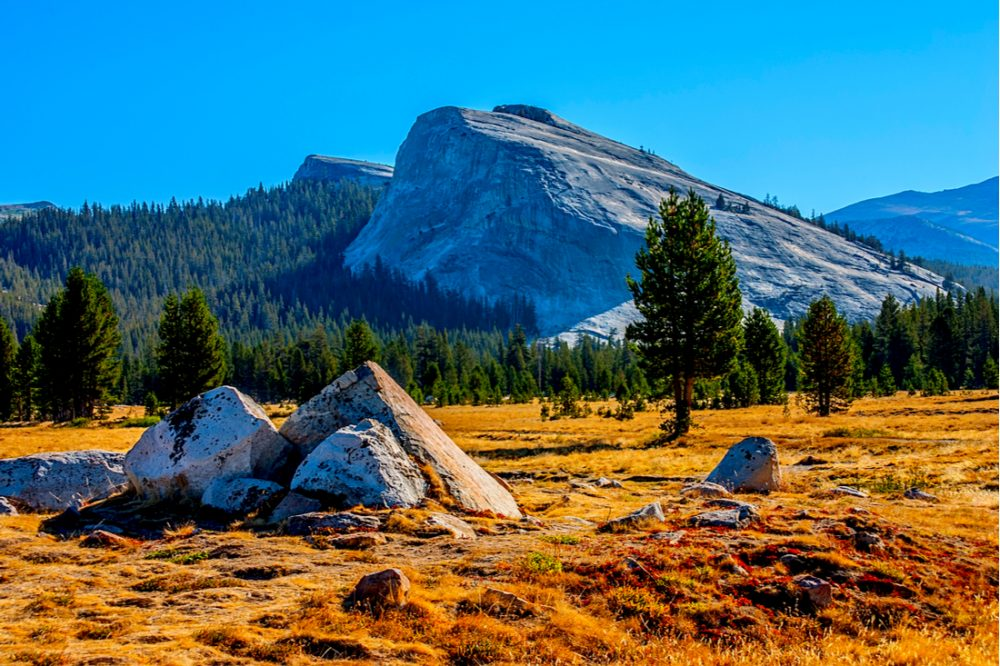Tuolumne meadows in summer, Yosemite National Park | things to do in yosemite