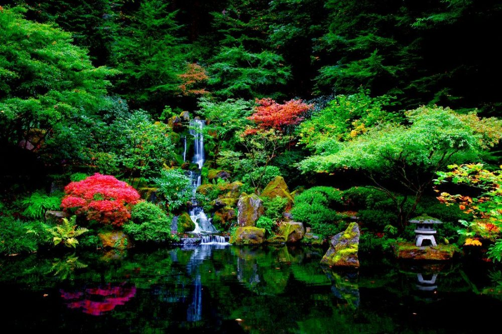 Waterfalls in a Japanese Garden | things to do in portland