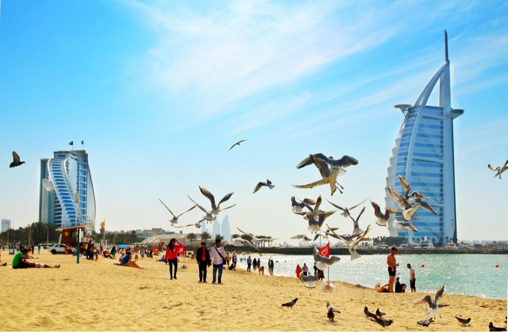 Daytime view of Jumeirah public beach with the sea and flying seagulls | best things to do in dubai