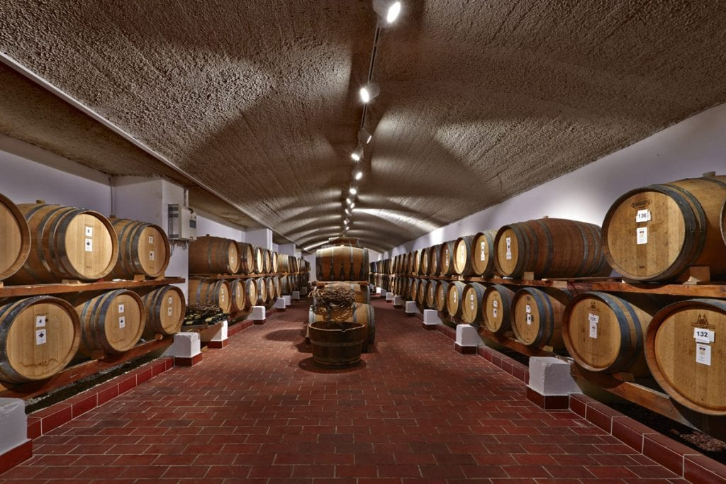 Santo Wines Winery | best things to do in santorini